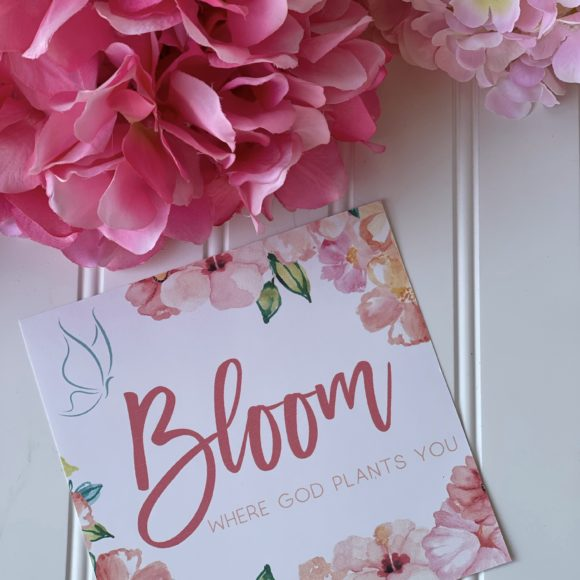 Bloom Where God Plants You Gift Box Set by A Great Impression